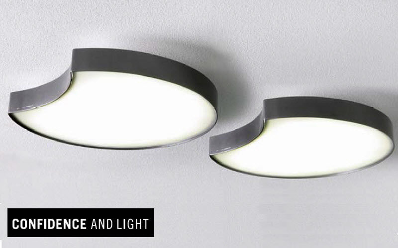 Confidence and Light Plafonnier de bureau Lustres & Suspensions Luminaires Intérieur  |