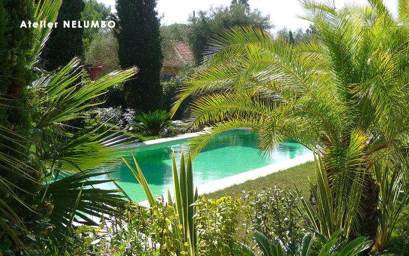 ATELIER NELUMBO Jardin paysager Jardins réalisations Extérieur Divers  |