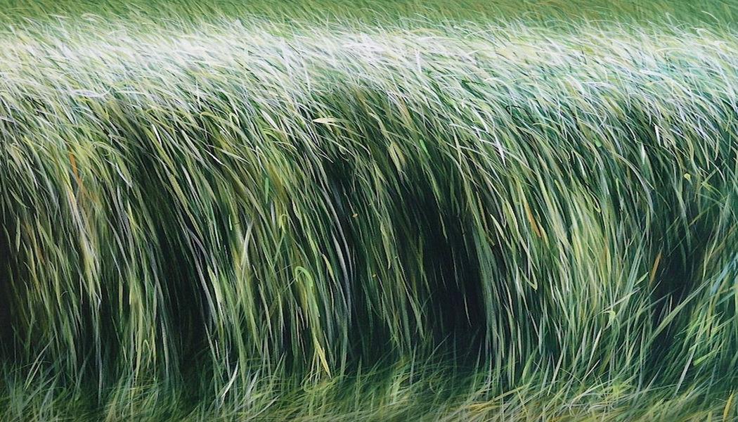MANUEL CANCEL Tableau contemporain Peintures Art  |