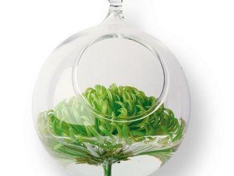 Tung Design - vase à suspendre - Vase À Fleurs