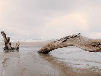 Graham & Brown - sélection déco cosy et chaleureuse - Photographie