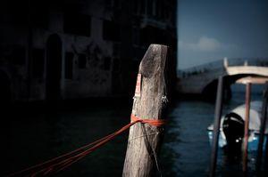 LIONEL ROY -  - Photographie
