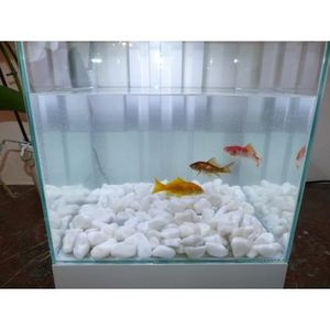 CLASSGARDEN - galet blanc aquarium 12-24 mm - Fontaine Aquarium