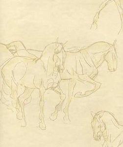 Lewis & Wood - equestre - Papier Peint