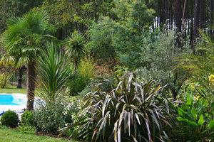 NATHALIE PAYENS -  - Jardin Paysager