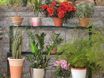 Jany - etag�re droite en acier pour plantes 56x100x75cm - Porte Pots De Jardin