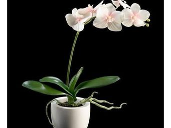 Deco Factory - phalaenopsis artificiel en pot fiori - Composition Florale