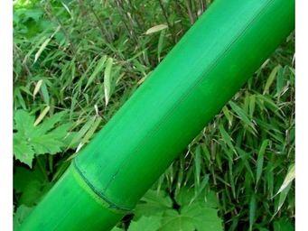 Deco Factory - canne de bambou vert ht 200 cm � 10 cm - Arbre Artificiel