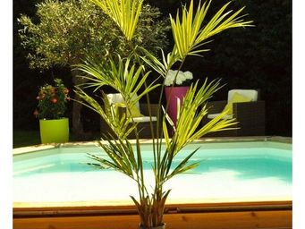 Deco Factory - kentia artificiel en pot swally - Arbre Artificiel