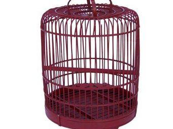 JP2B DECORATION -  - Cage � Oiseaux