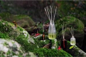 BSAB -  - Diffuseur De Parfum Par Capillarit�