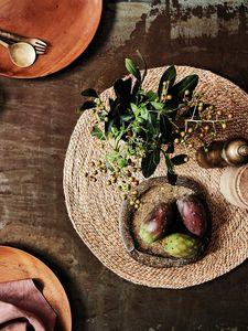 Armadillo -  - Set De Table