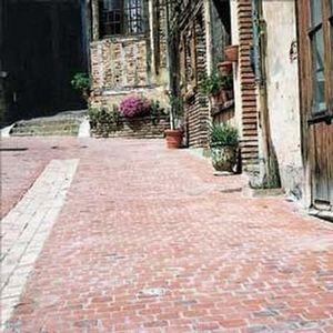Brique De Vaugirard (gpe Terca Briques) - rose toulousain flammé - Pavé D'extérieur