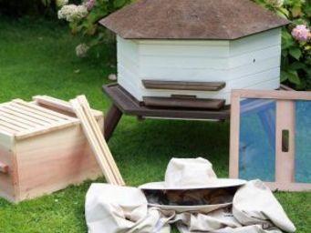 Wildlife world - homebee honey hive kit - top bar - Ruche