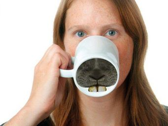 Donkey - mug change de nez dents de lapin - Mug
