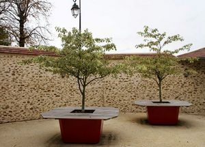 IMAGE'IN by ATELIER SO GREEN -  - Bac À Arbre
