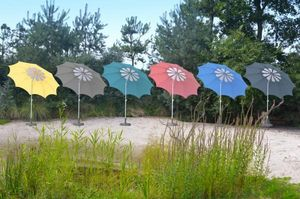 Borek -  - Parasol