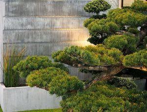 Tonton Zingueur  Designer du Zinc -  - Mur D'eau