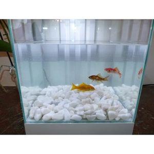 CLASSGARDEN - galet blanc aquarium 12-24 mm - Fontaine Aquarium