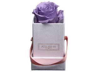 Atelier 19 - box solo parme doux - Fleur Stabilisée