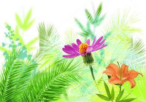 DECLIK - tropique - Papier Peint Personnalis�