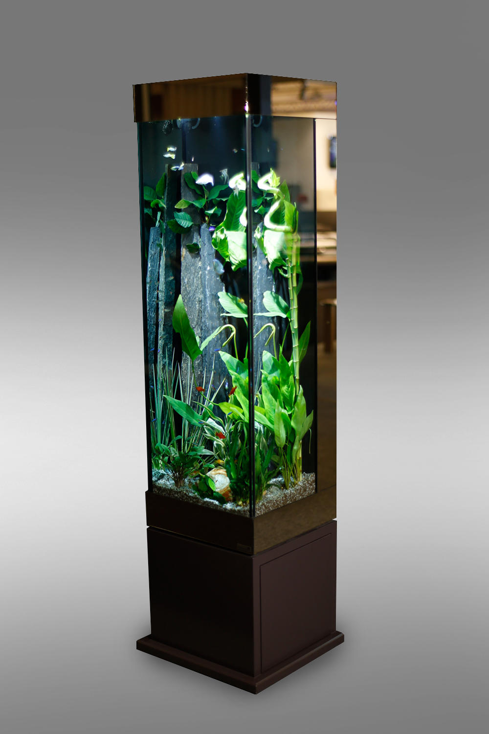 aquarium colonne aquaniman decofinder. Black Bedroom Furniture Sets. Home Design Ideas