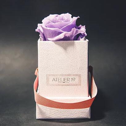 Atelier 19 - Fleur stabilisée-Atelier 19-Box solo parme doux
