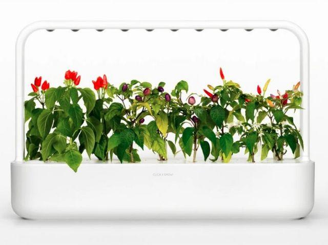Click & grow - Potager d'intérieur-Click & grow