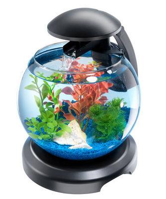Tetra - Aquarium-Tetra-Aquarium tetra cascade globe 6.8 l 30.2x27x35cm