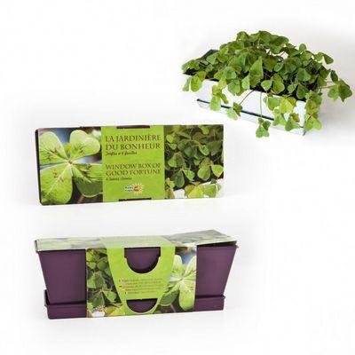 Radis Et Capucine - Potager d'intérieur-Radis Et Capucine-Jardinière du bonheur trèfle à 4 feuilles