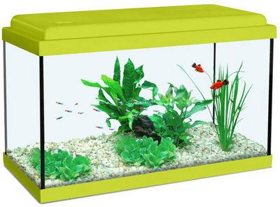 ZOLUX - Aquarium-ZOLUX-Aquarium enfant vert kiwi 33.5L