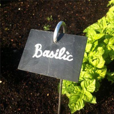 FERME DE SAINTE MARTHE - Etiquette de jardin-FERME DE SAINTE MARTHE