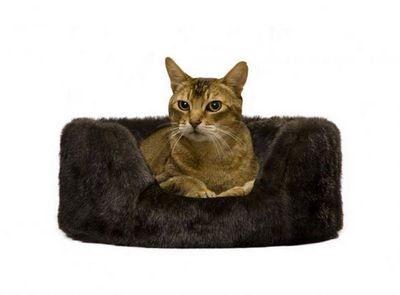 Lord Lou - Lit pour chat-Lord Lou-Kylie