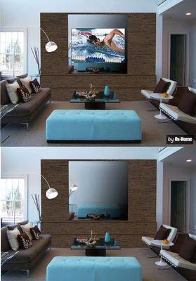 OX-HOME - Téléviseur écran miroir-OX-HOME-Mirror Screen