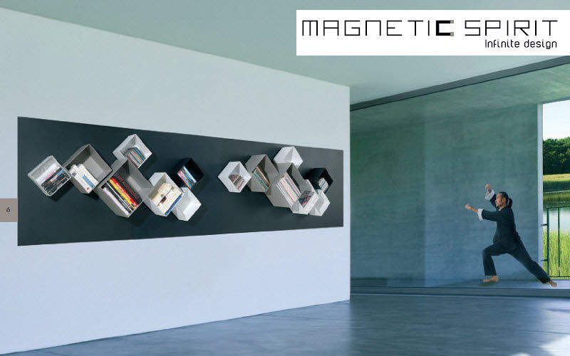 MAGNETIC SPIRIT    Home office  