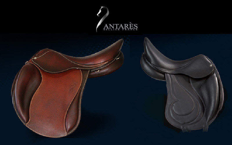 Antares Sellier Saddle Various decoration accessories Beyond decoration  |