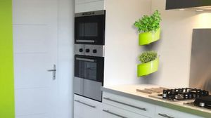 GREEN TURN -  - Wall Mounted Planter