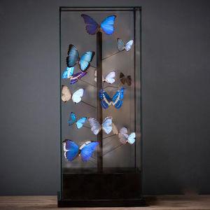 Design Et Nature Butterfly