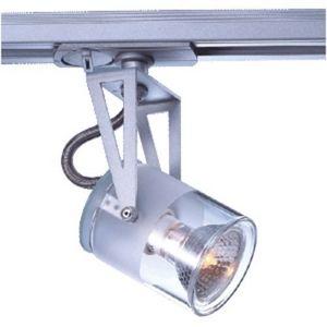 Spotlight rail