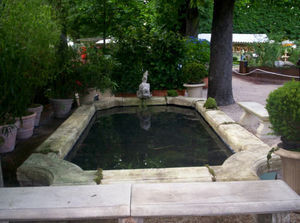 Christian Gesland Garden pond