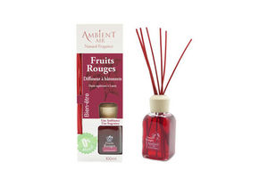 AMBIENTAIR -  - Perfume Dispenser