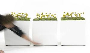 BASTALPE -  - Garden Pot