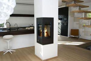 Rais - rais q-bic  - Fireplace Insert