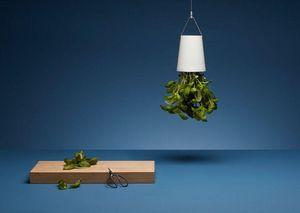 BOSKKE - sky planter - Aromatics Pot