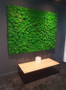 Vegetal  Indoor -  - Grass Covered Wall