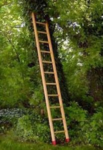 Fournier -  - Ladder