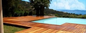 Diodon -  - Pool Deck