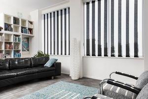 JASNO - store californien revisite - Blind With Vertical Stripes