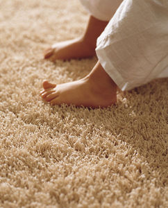 KP - hippy - Fitted Carpet
