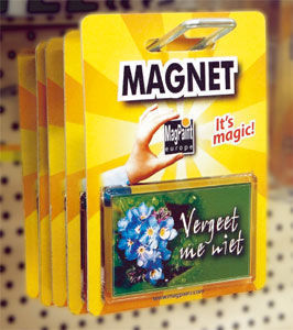 Magpaint -  - Household Appliance Magnet